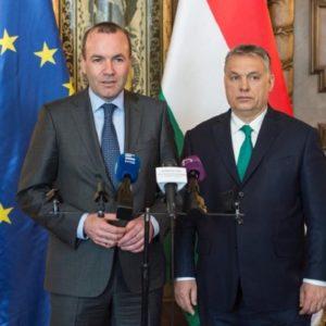 Egy jellemtelen német karrierista (W1G) miatt védik Orbánt