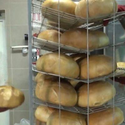 Bartus László: A ditrói pékek