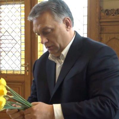 Markó Beáta: A Nemzeti Embertenyészet Rendszere