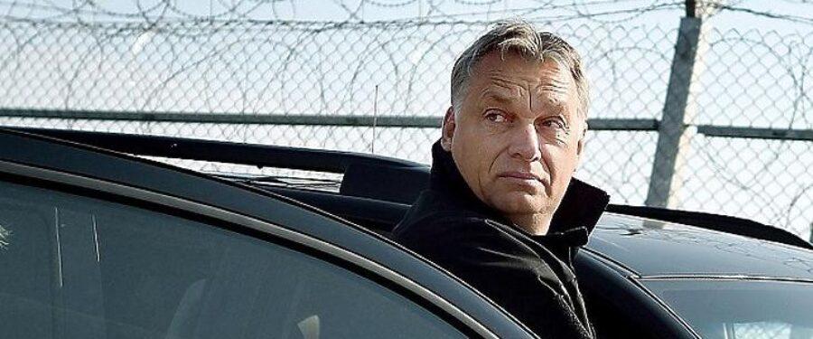 Bartus László: Deportáló világnemzet